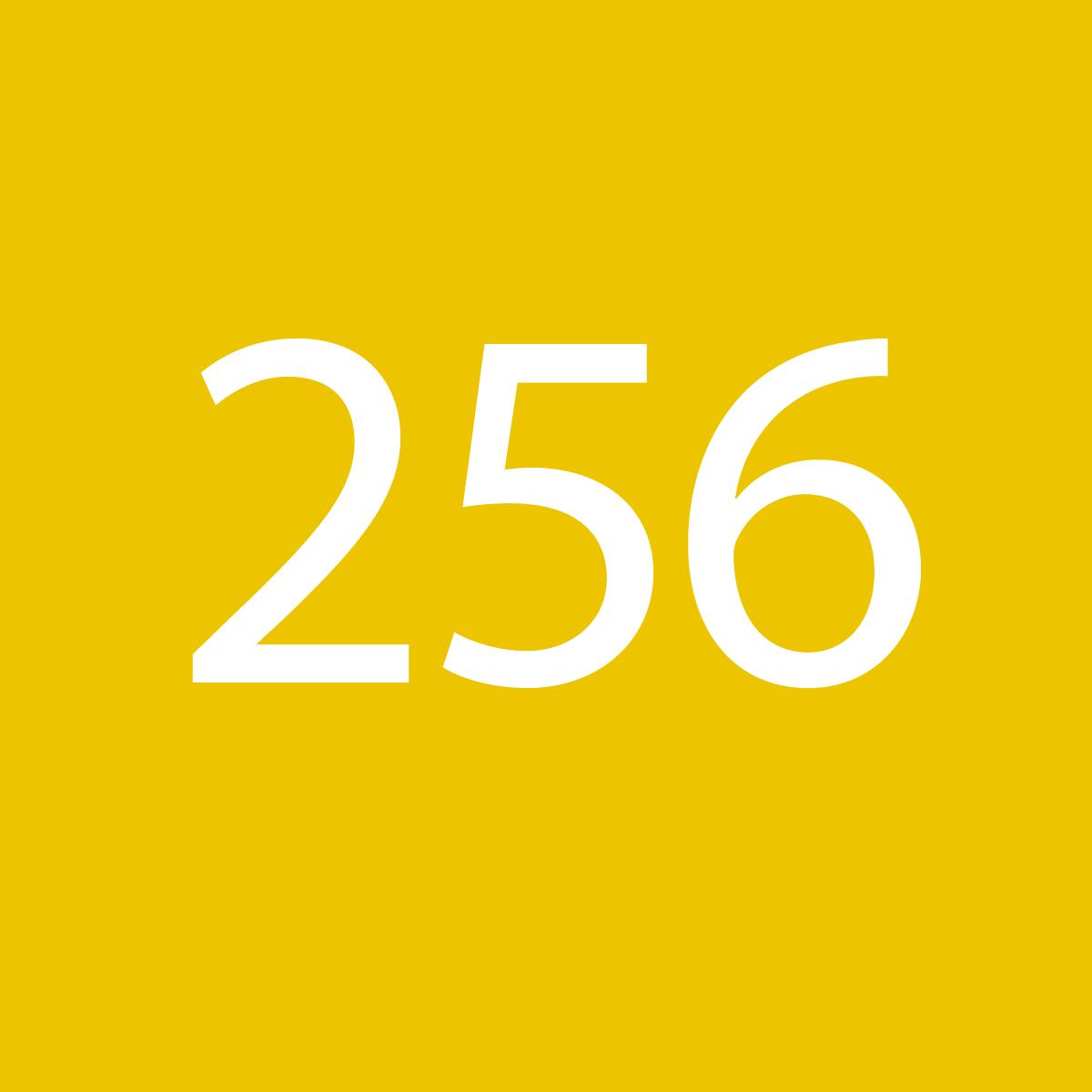 256*256